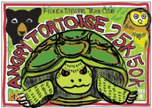 angry-tortoise25k-flyer-d5